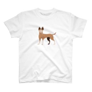 東堂 優 /Yu TODOのちょっと緊張しいのほご犬さん T-shirts