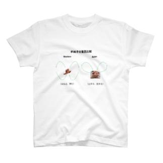 Ondo Dimensions 1 T-shirts