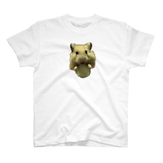 きゅうりとキンクマだいちゃん T-shirts