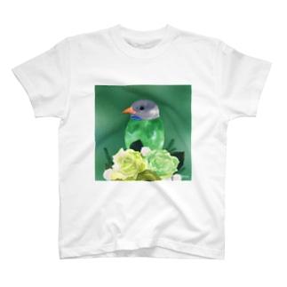 Forest〜ブッポウソウ T-shirts