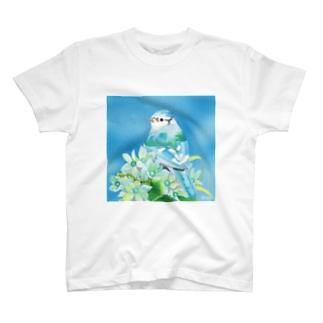 Turquoise〜アオカケス T-shirts