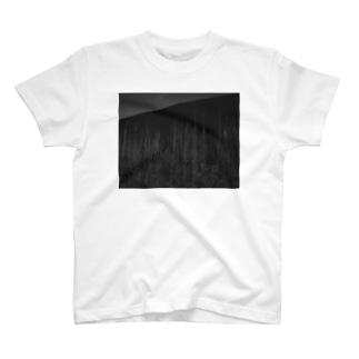 ボタ山と枯れ薄 T-shirts