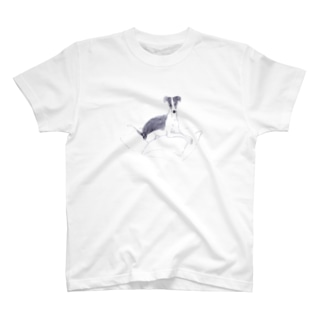 mgpのグラン2 T-Shirt