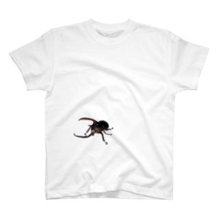 ネプチューン T-shirts
