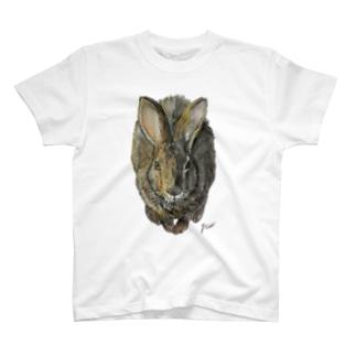 ノウサギのぷっち君 T-shirts