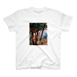 SKY HIGH T-shirts