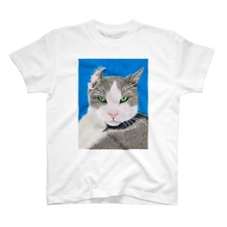 Cat 11 T-shirts
