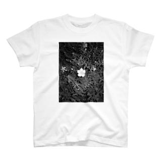 夜の散歩 T-shirts