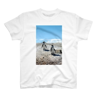 PENGUIN T-shirts