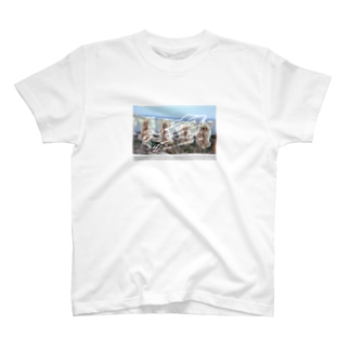 Surume_p T-shirts