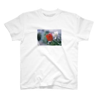 ふくだのチューリップ T-Shirt