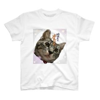 かりん T-shirts