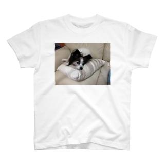 ハッピー犬のハッピー T-shirts