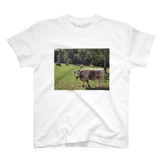 牛! T-shirts