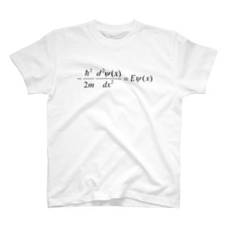 FCLBRの1次元の時間を含まないシュレディンガー方程式 T-shirts