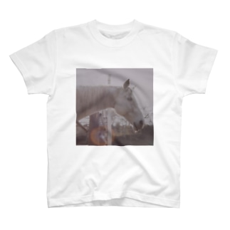 Sun and Horse T-shirts