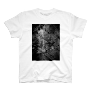Artwork#1 岩肌-monochrome- T-shirts