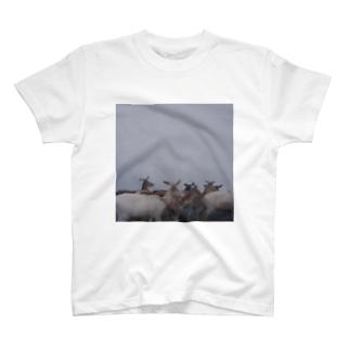 Fog and deer Ⅰ T-shirts