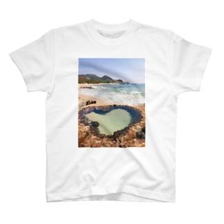 AMAMI T-shirts