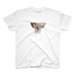 えびすの手 T-shirts