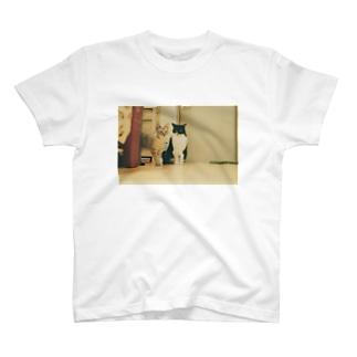 きなことくるみ T-shirts