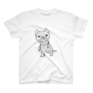 タスマニアちゃん Tシャツ T-shirts