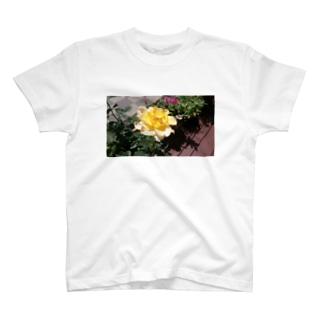 家のバラ T-shirts