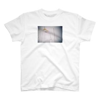 あいつが忘れていったTシャツ T-shirts