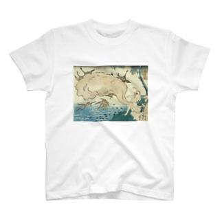 タヌキのふぐり T-shirts