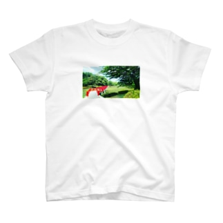 IWATSUKI T-shirts