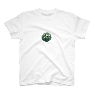 兜丸のイラスト T-Shirt
