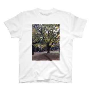 イチョウあちゃー T-shirts
