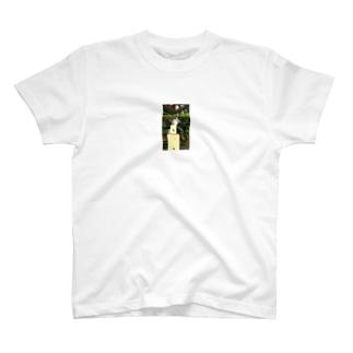 トトロトカゲ T-shirts