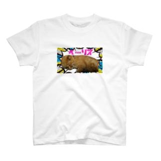 ペーソステーシャツ T-shirts