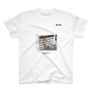 RAF FACEのRain dog 2 T-shirts
