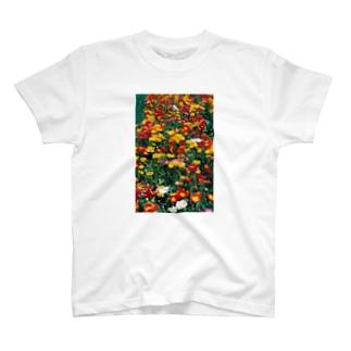 こんな暖かな彩に乗って・・・ T-shirts