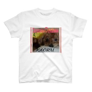 トイプードルかおる T-shirts