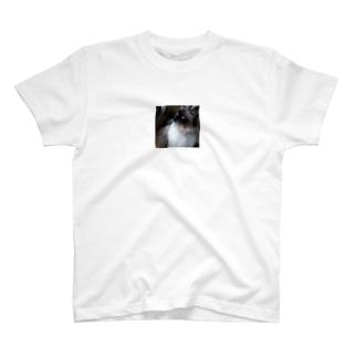 にゃんこ先生・朝活 T-shirts