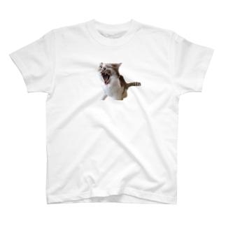 にゃん次郎21歳記念Tシャツ T-shirts