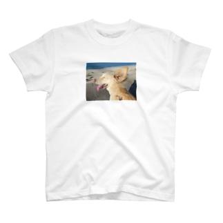海風~ T-shirts