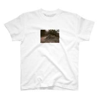 続・切り株Tシャツ T-shirts