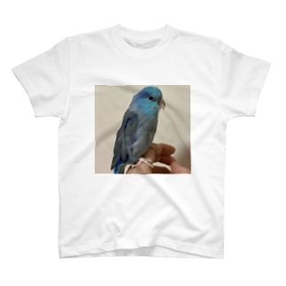 ちゅぴ T-shirts