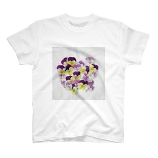 パンジー採取 T-shirts