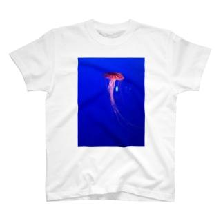 くらげまる T-shirts