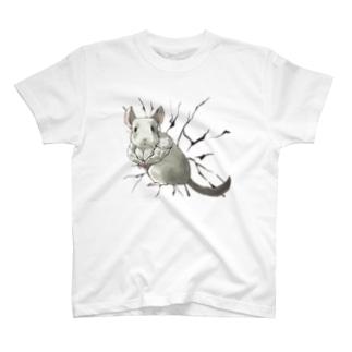 チンチラ-パイドチェスト- T-shirts