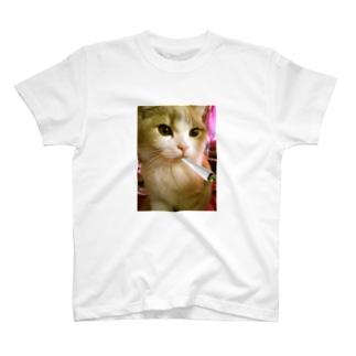 ジョル猫Chill T-shirts
