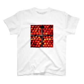 はこづめ T-shirts