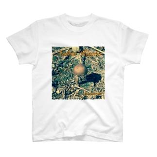 哀愁きのこTシャツ 淡色Ver. T-shirts