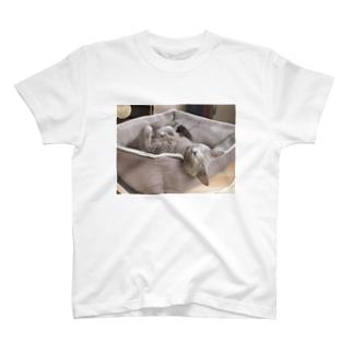 シャロンエコバッグ T-shirts