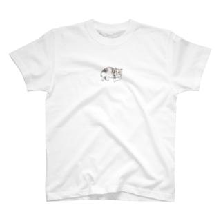 100nyans084.baroncat T-shirts
